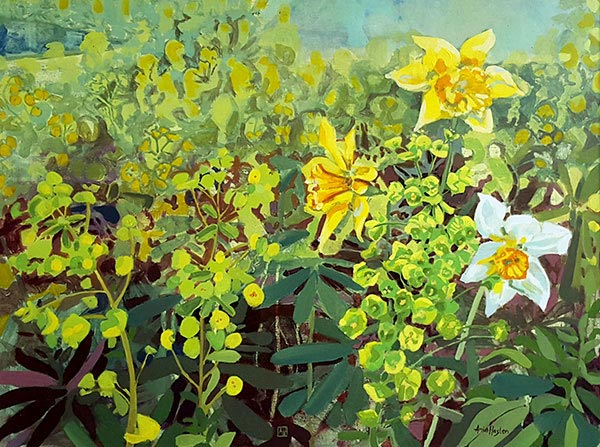 Acrylic painting of daffodills by Amie Haslen, at Norton Way Gallery, Hertfordshire