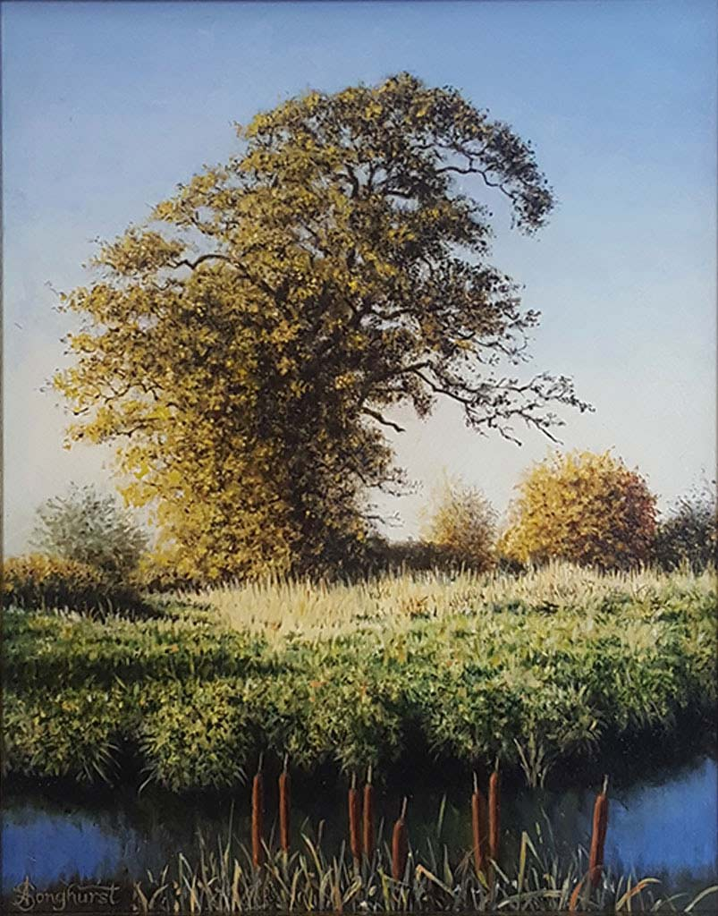 Oil on Linen by Anne Songhurst at Norton Way Gallery, Hertfordshire